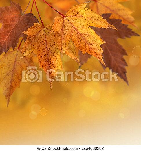autumn leaves, ondiepe focus, achtergrond - csp4680282