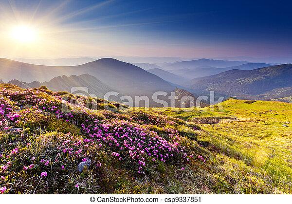 berg landschap - csp9337851