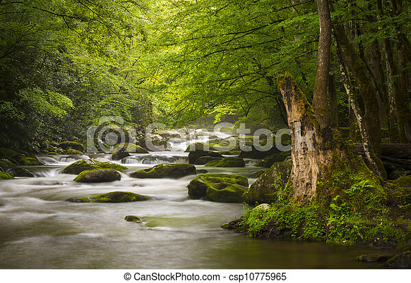 bergen, groot, relaxen, natuur, rokerig, park, gatlinburg, tn, vredig, nevelig, tremont, rivier, nationale, landscape, scenics - csp10775965