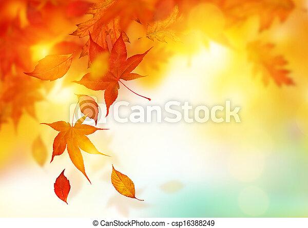 bladeren, herfst, het vallen - csp16388249
