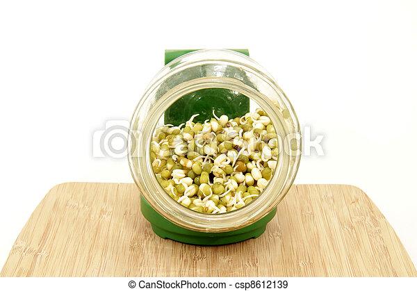 boon, mung, seedlings - csp8612139