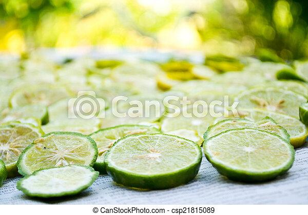 close-up, fruit, citroen snijdt - csp21815089