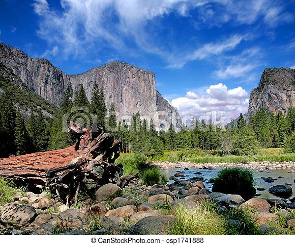 el, park, natie, capitan, aanzicht, yosemite - csp1741888