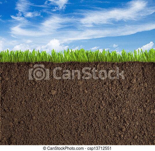 gras, hemel, terrein, achtergrond - csp13712551