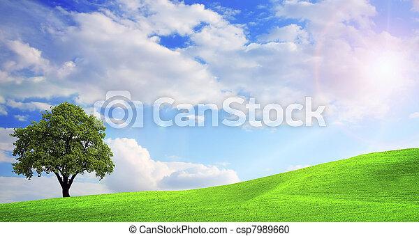 groen landschap, natuur - csp7989660