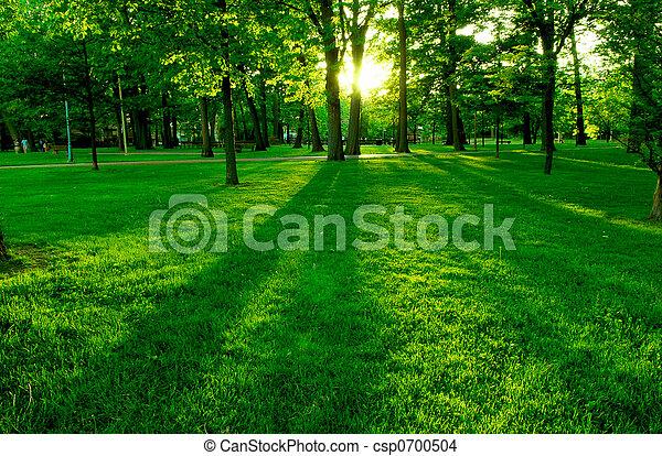 groen park - csp0700504