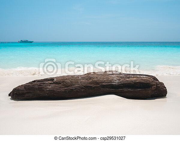 groot, rots, strand, zee, golf - csp29531027