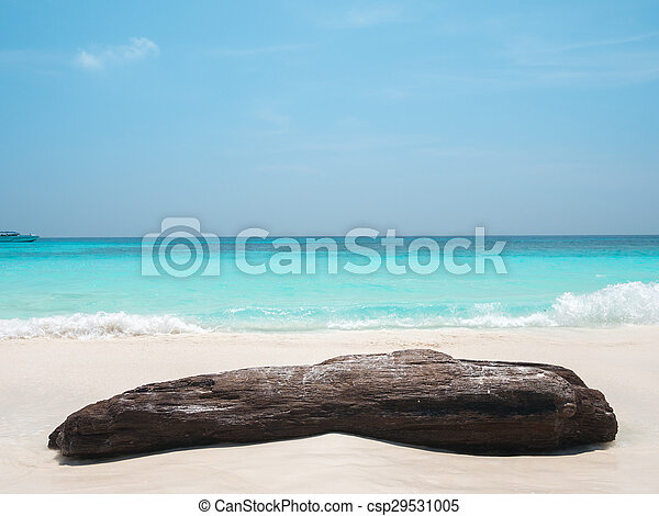 groot, rots, strand, zee, golf - csp29531005