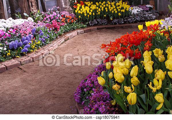 grown, exquisite., op, parken, tulpen - csp18075941