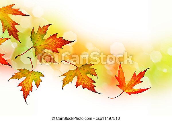 herfst, vallende verlofen - csp11497510