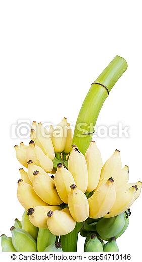 isoleren, op, gele, afsluiten, witte , banaan - csp54710146