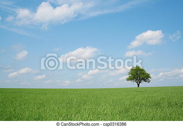 lente, landscape - csp0316386