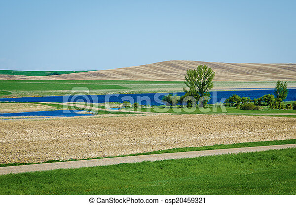 lente, prairies - csp20459321