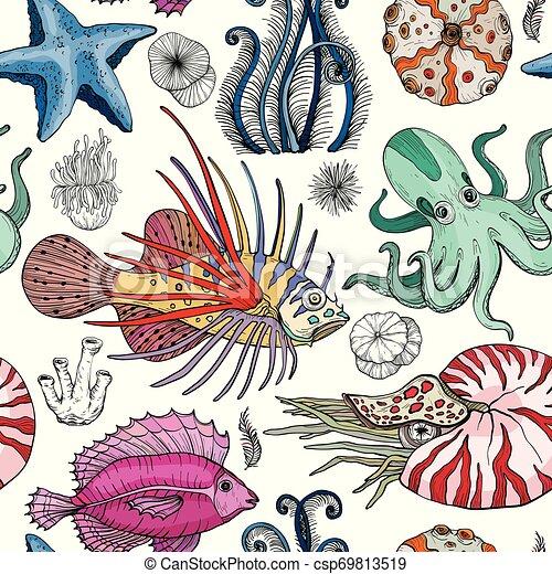 model, deepwater, seamless, organismen - csp69813519