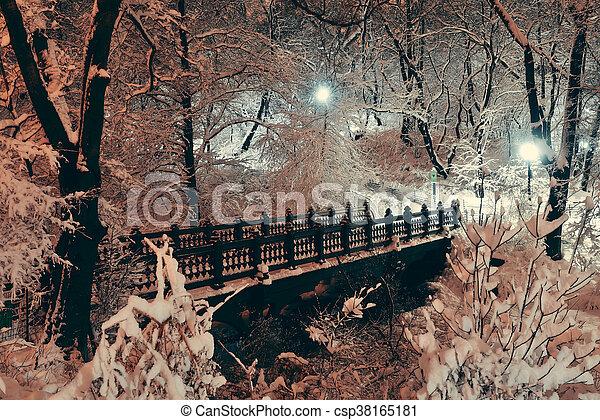 park, centraal, winter - csp38165181