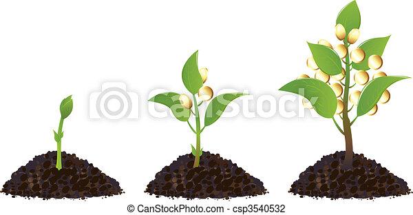 planten, geld, leven, proces - csp3540532