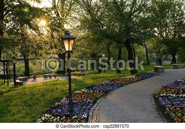 polen, groene, parken - csp22891570