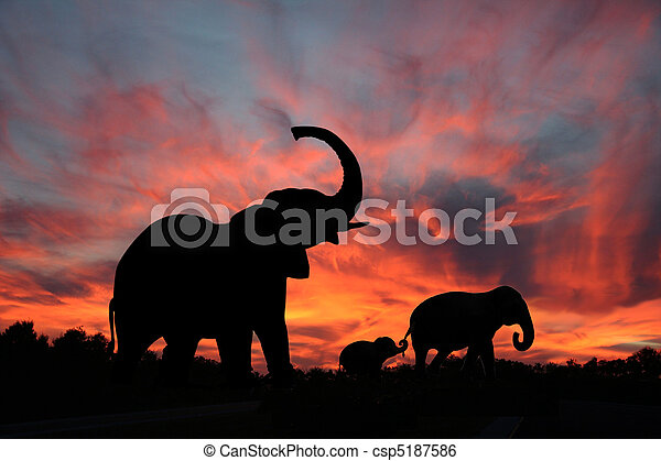 silhouette, ondergaande zon , olifanten - csp5187586