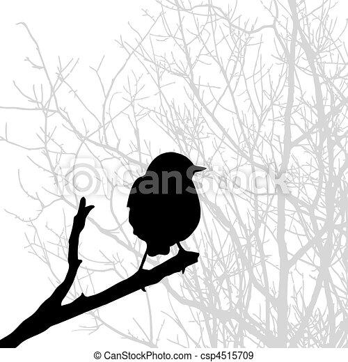 silhouette, vogel, tak - csp4515709