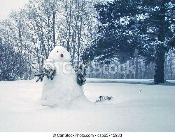 sneeuwpop - csp65745933