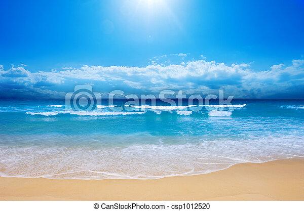 strand, paradijs - csp1012520