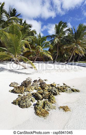 strand rots - csp5941045