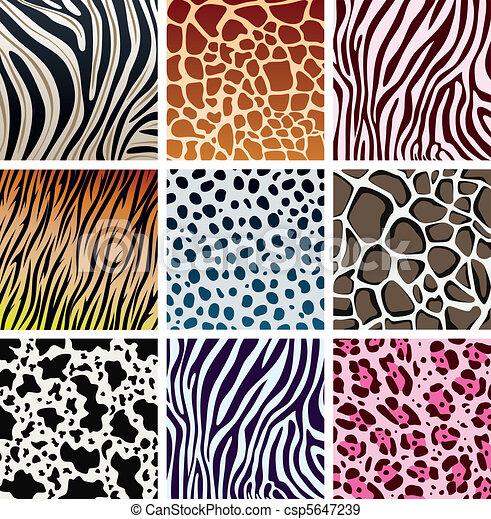 texturen, huid, dier - csp5647239