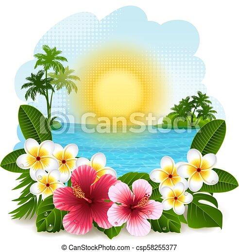 tropisch landschap - csp58255377