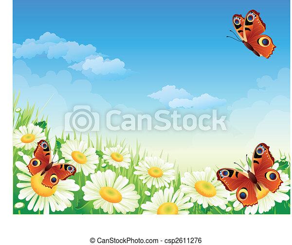 vlinder, bloemen - csp2611276