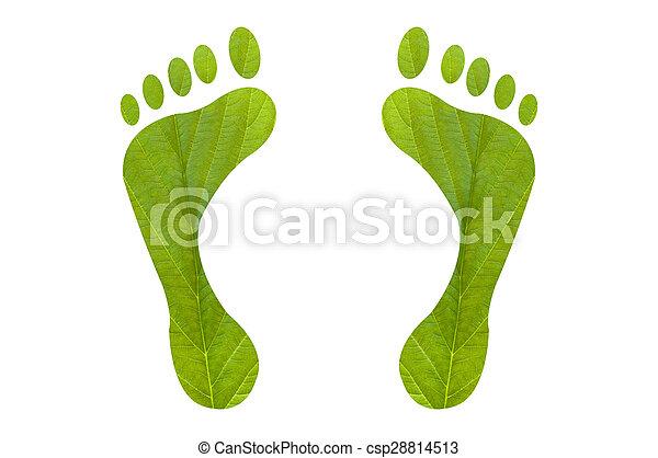 voet printen, groene, menselijk - csp28814513