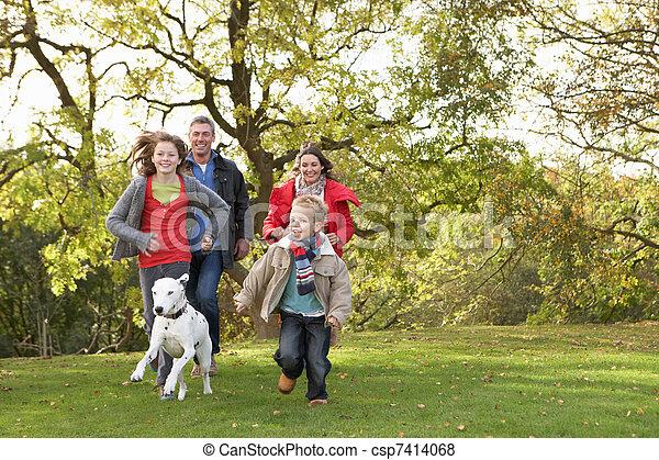 wandelende, gezin, park, jonge, dog, door, buitenshuis - csp7414068