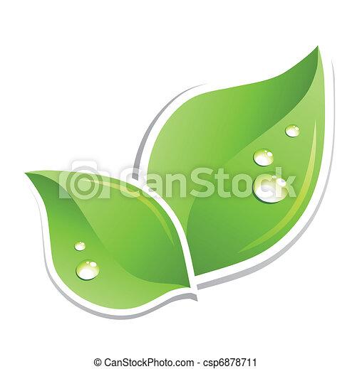 water, groene, vector, blad, droplets. - csp6878711