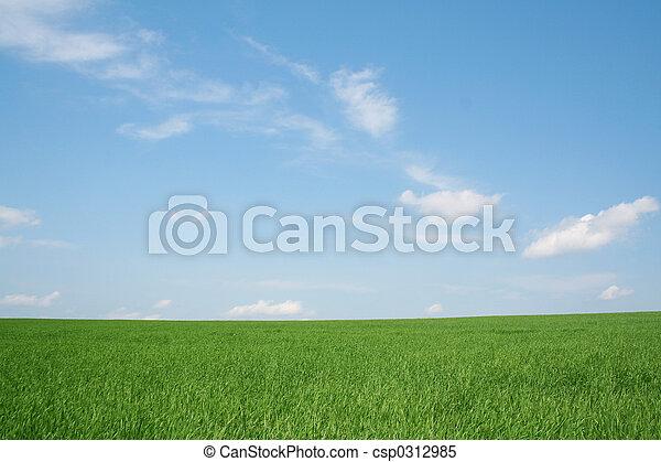 wheaten, akker, landscape - csp0312985