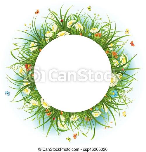 zomer, frame, bloemen - csp46265026