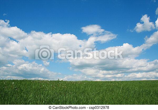 zomer, landscape - csp0312978